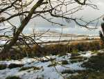 Bodmin Moor in the snow