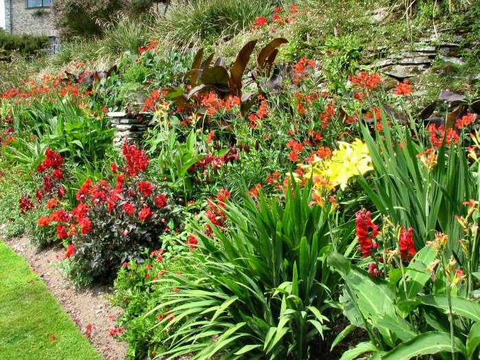 Flower Beds - Coleton Fishacre